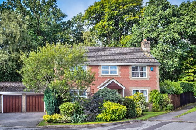 Thumbnail Detached house for sale in Tavy Close, Chandler's Ford, Eastleigh