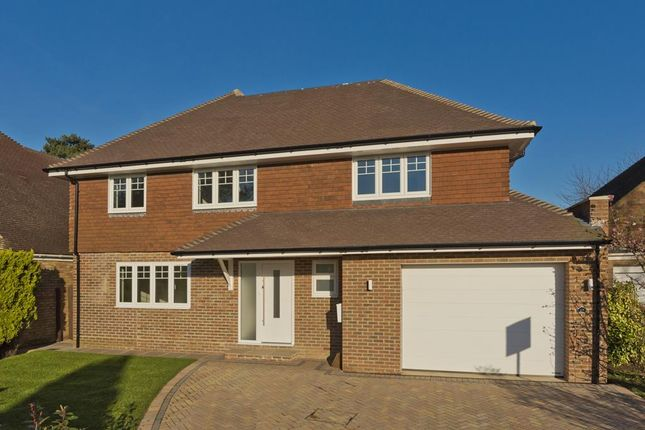 Thumbnail Detached house to rent in Ferndown Gardens, Cobham