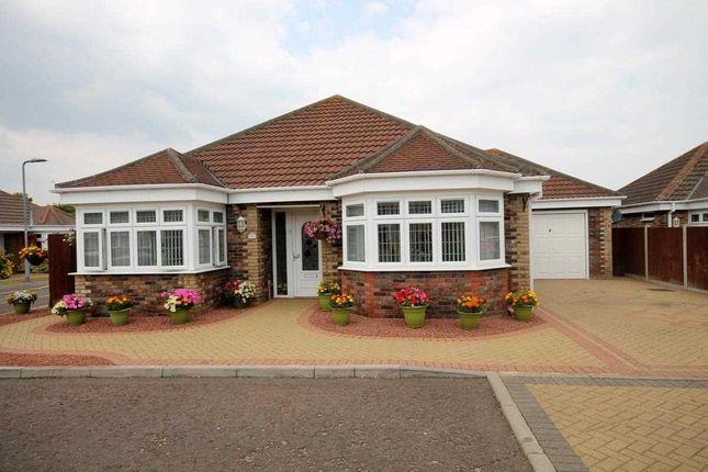 Thumbnail Bungalow for sale in Oak Close, Clacton-On-Sea