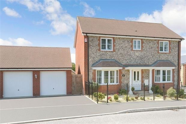 Thumbnail Detached house for sale in Larkspur Drive, Highweek, Newton Abbot, Devon.