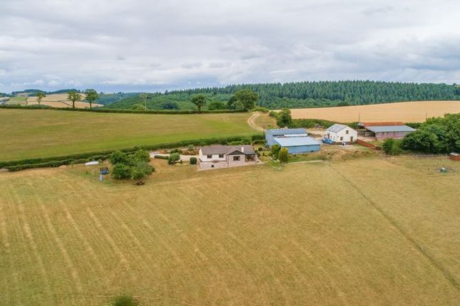 Thumbnail Detached bungalow for sale in Tedburn St. Mary, Exeter