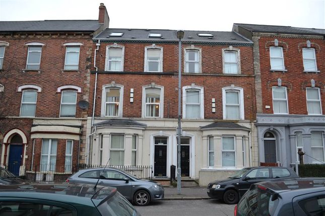 Thumbnail Flat to rent in 3, 16 Cromwell Road, Belfast