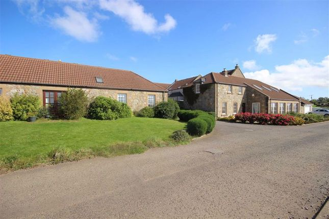 Thumbnail Terraced house for sale in 6, Wester Balrymonth Steadings, St Andrews, Fife