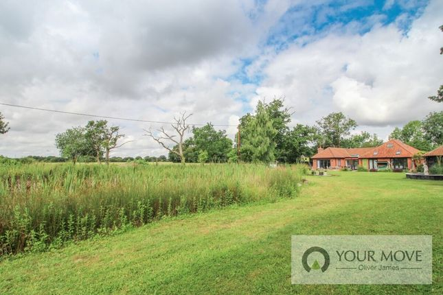 Thumbnail Bungalow for sale in Ringsfield Road, Ilketshall St. Andrew, Beccles