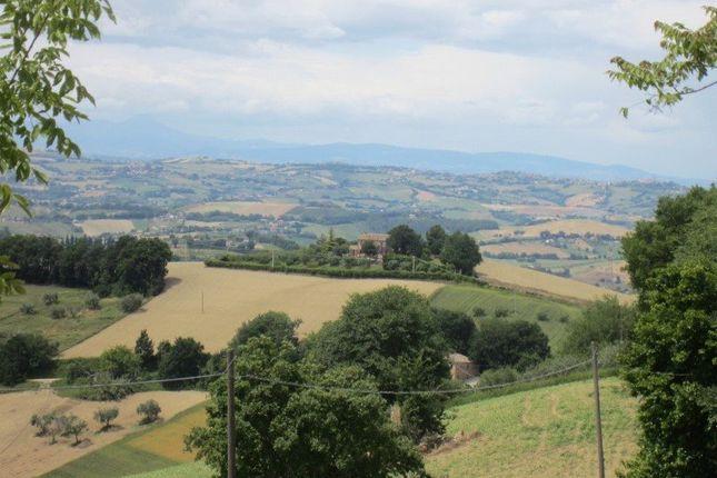 Picture No. 04 of Casa Anna, Monterubbiano, Le Marche