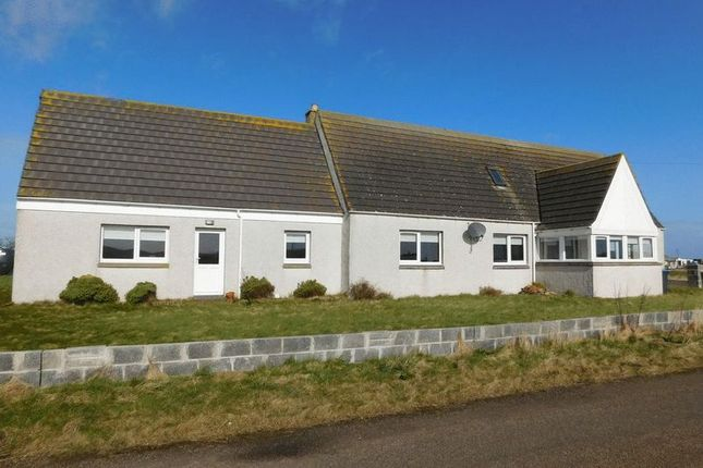 Thumbnail Detached house for sale in Scarfskerry, Thurso