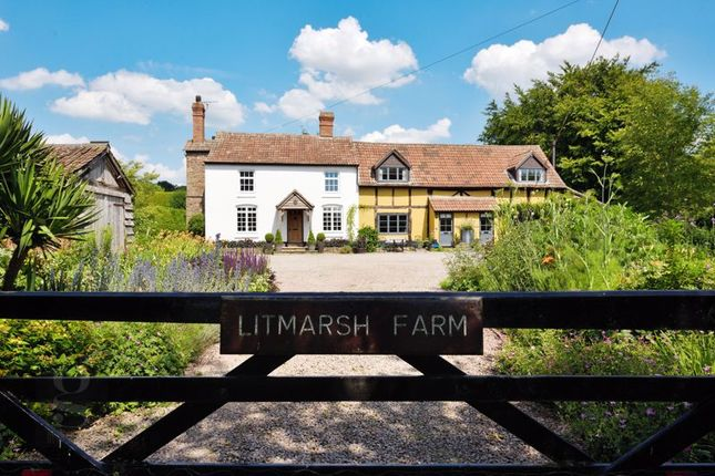 Thumbnail Detached house for sale in Marden, Hereford