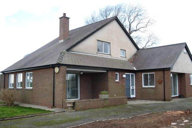 Thumbnail Detached bungalow to rent in Dinas, Llanwnda