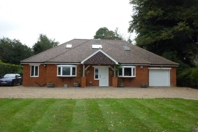 Thumbnail Detached house to rent in Church Road, Halstead, Sevenoaks