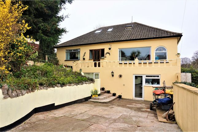 Thumbnail Detached house for sale in Coles Lane, Newton Abbot