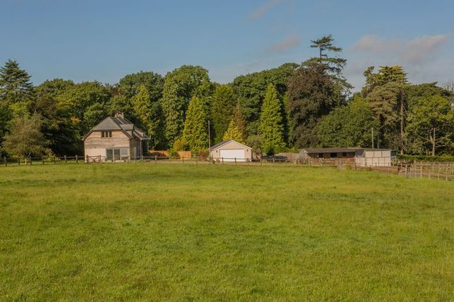 Thumbnail Equestrian property for sale in Highampton, Beaworthy