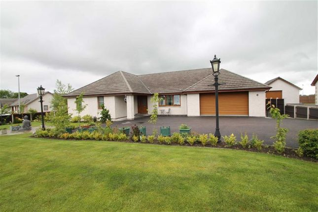 Thumbnail Detached bungalow for sale in Hawthorn Way, Tain, Highland & Islands