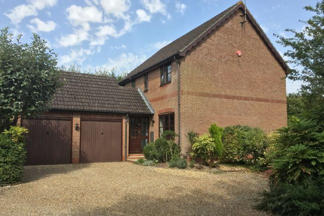 Thumbnail Detached house for sale in Brooks Rise, Andover