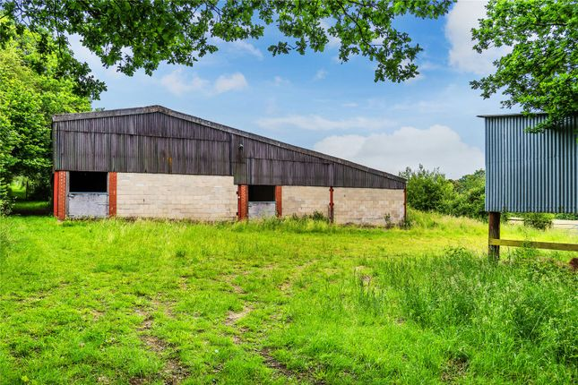 Detached house for sale in Alfold Road, Dunsfold, Godalming, Surrey