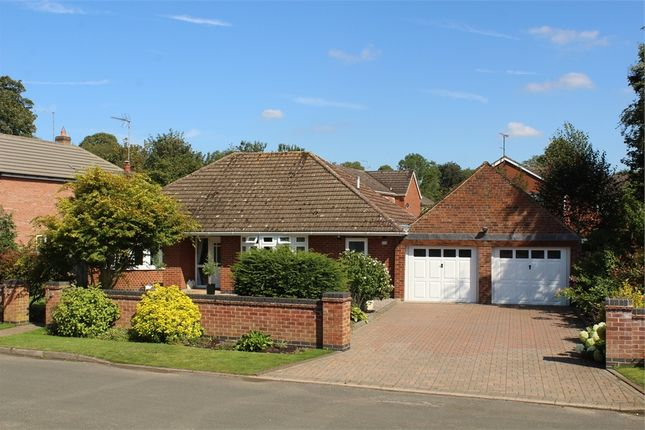 Thumbnail Detached bungalow for sale in Brook Street, Walcote, Lutterworth