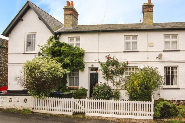 Thumbnail Terraced house to rent in Chapel Row, Ashley, Newmarket
