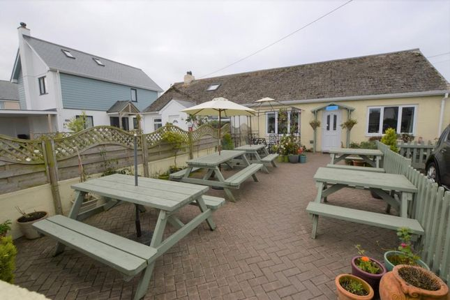 Thumbnail Semi-detached bungalow for sale in Deer Park, St Merryn, Padstow, Cornwall