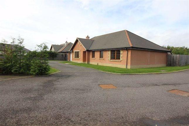 Driveway of Mansefield Park, Kirkhill, Inverness IV5