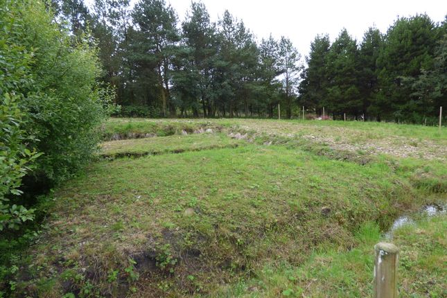 Thumbnail Land for sale in Alston, Cumbria