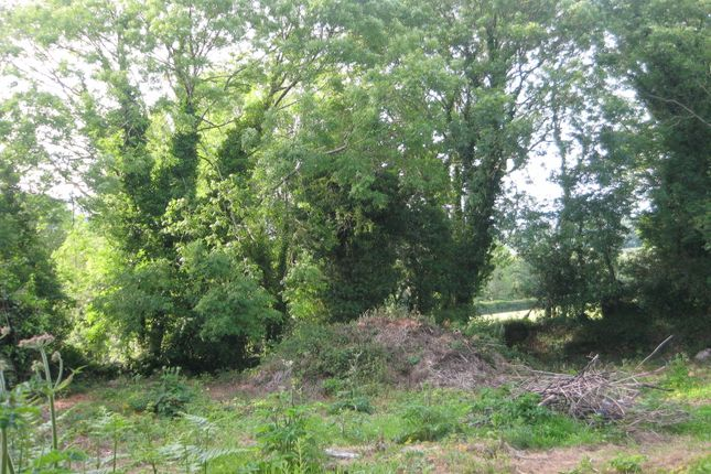 Thumbnail Land for sale in Rosnastraw, Tinahely, Co. Wicklow
