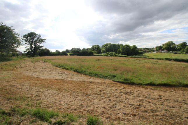 Thumbnail Land for sale in Beckley, Near Rye, East Sussex
