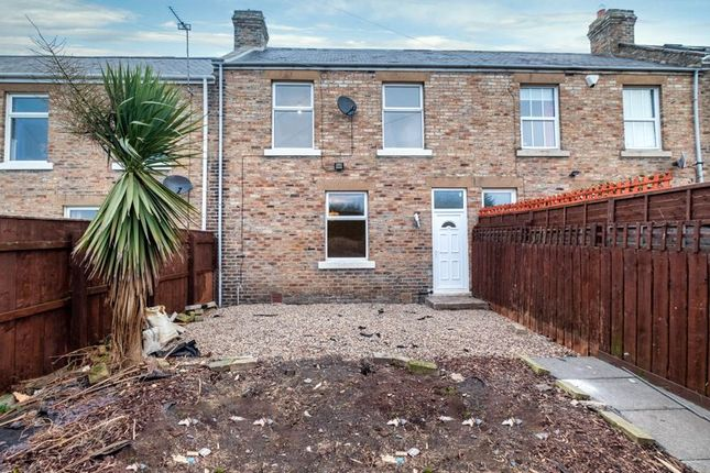Thumbnail Terraced house to rent in Oak Street, Throckley, Newcastle Upon Tyne