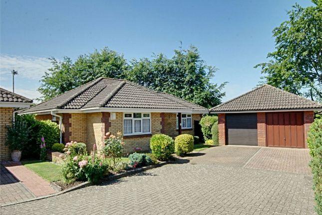 Thumbnail Detached bungalow for sale in Roman Rise, Sawbridgeworth, Hertfordshire