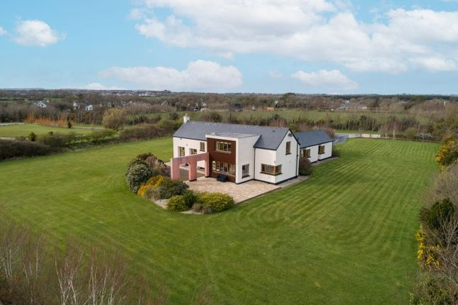 Thumbnail Detached house for sale in 'shalom', Ballyfinogue Great, Drinagh, Wexford County, Leinster, Ireland