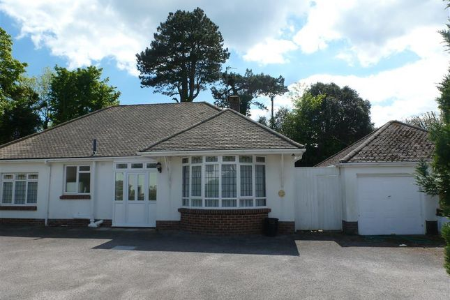 Thumbnail Property to rent in Daddyhole Road, Torquay