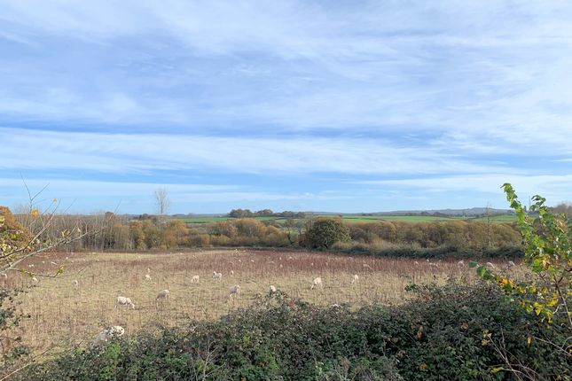 Thumbnail Land for sale in Single Building Plot For Detached House, Topsham