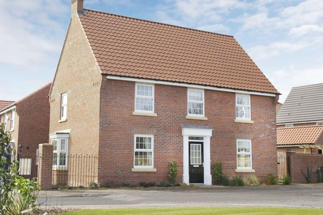 "Thumbnail Detached house for sale in ""Cornell"" at Park View, Moulton, Northampton"