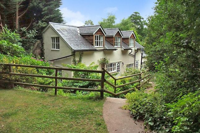 Thumbnail Detached house to rent in Snodwell Farm, Stockland Hill, Honiton