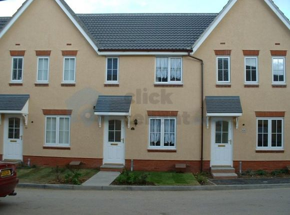 Thumbnail Terraced house to rent in Gulls Croft, Braintree, Essex