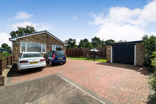 3 bed detached bungalow for sale in Damon Close, Pilsley, Chesterfield S45
