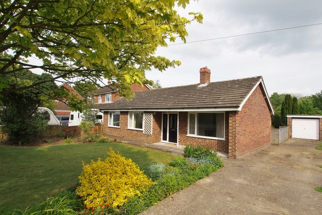 Thumbnail Detached bungalow to rent in Norwich Road, Tacolneston, Norwich, Norfolk