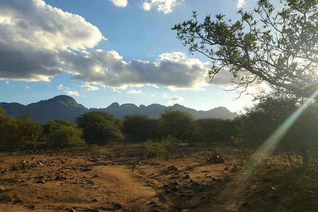 Land for sale in R527, Hoedspruit, 1380, South Africa