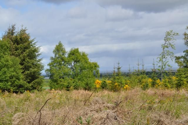 Thumbnail Land for sale in Plot At Easter Newforres Rafford, Forres