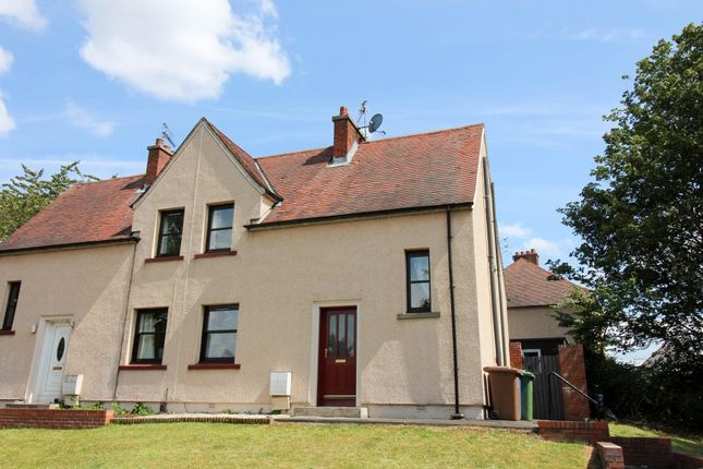 2 bed semi-detached house to rent in Westquarter Avenue, Falkirk FK2