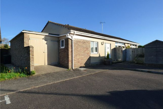 Thumbnail Detached bungalow to rent in Hillfort Close, Dorchester