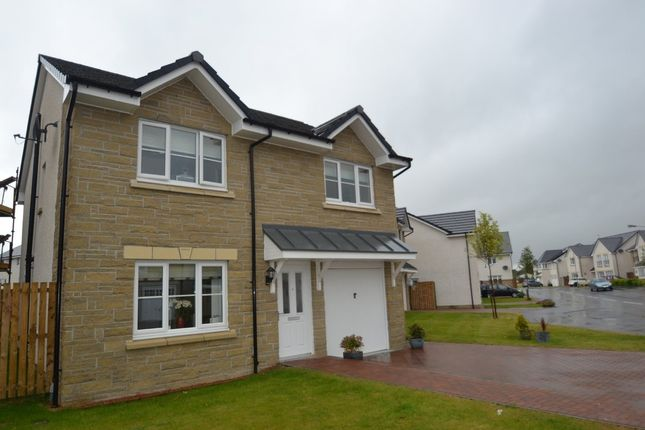 Thumbnail Detached house to rent in Meiklejohn Street, Stirling