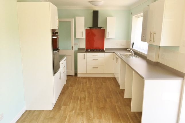 Thumbnail Detached bungalow to rent in Barton On Sea, Barton On Sea, New Milton