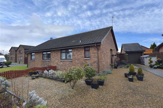 Thumbnail Semi-detached bungalow for sale in Tarras Drive, Renfrew