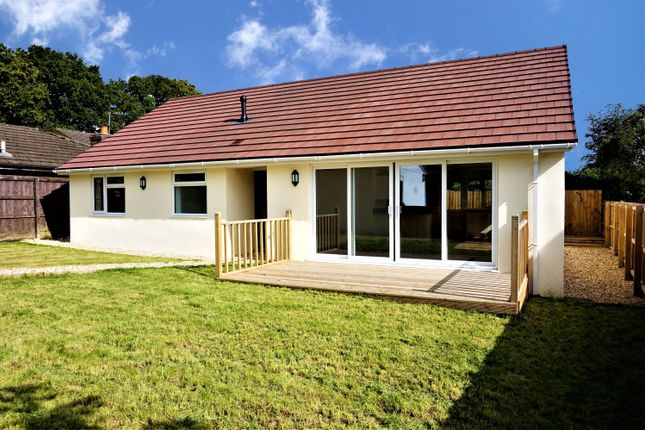 Thumbnail Detached bungalow for sale in Mount Hill, Liverton, Newton Abbot