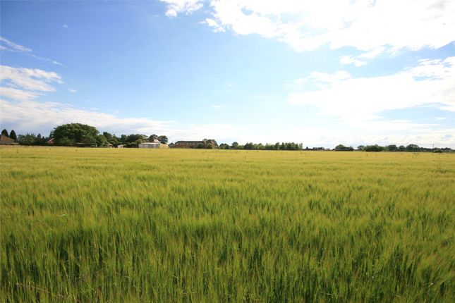 Thumbnail Land for sale in Land Off Tooley Lane, Wrangle