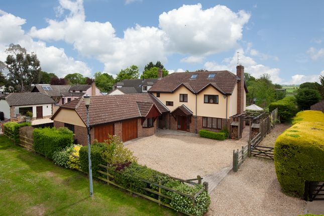 Thumbnail Detached house for sale in Challis Green, Barrington, Cambridge