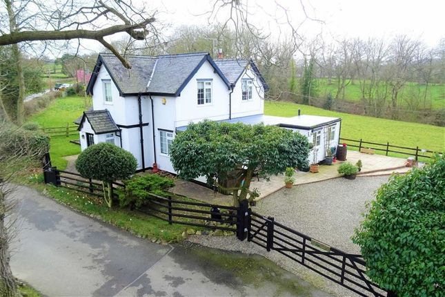 Thumbnail Detached house for sale in Top Lodge, Trelydan, Welshpool, Powys