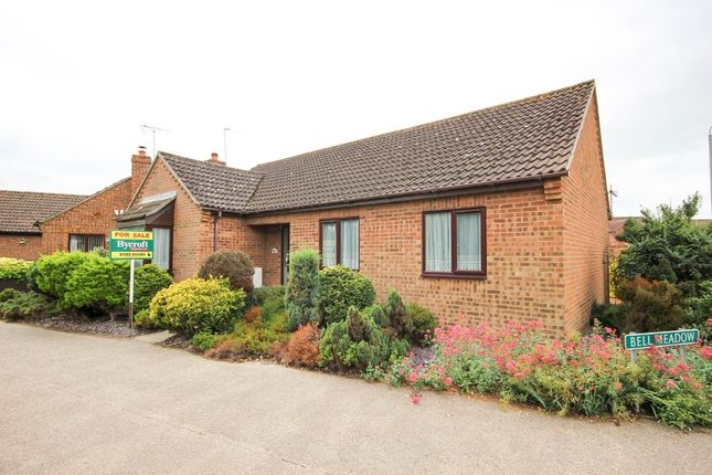 Thumbnail Detached bungalow for sale in White Street, Martham, Great Yarmouth