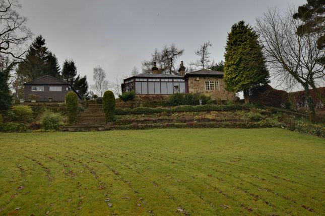 Thumbnail Lodge for sale in Mill Farm Road, Hamsterley Mill, Rowlands Gill, Durham