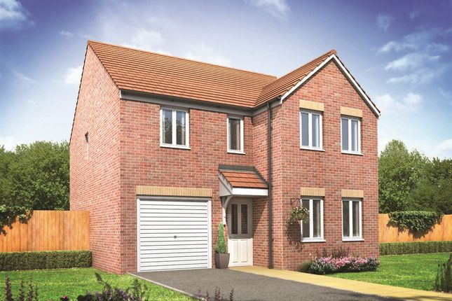 """Thumbnail Detached house for sale in """"The Kendal"""" at Seaside Lane, Easington, Peterlee"""