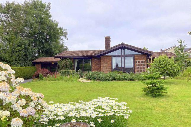 Thumbnail Detached bungalow for sale in Carmarthen Road, Kilgetty